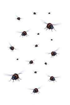 매스 말벌은 흰색 배경에 격리되어 날고 있습니다. 파일에는 작업하기 쉬운 클리핑 경로가 포함되어 있습니다.