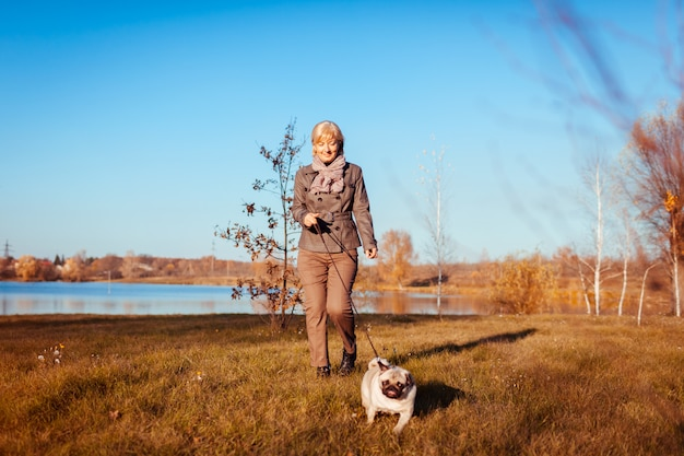 Master walking pug dog in autumn park by river