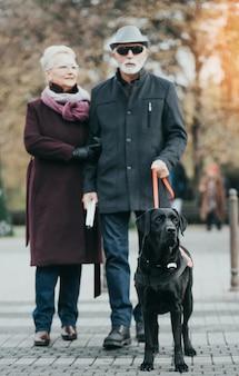 長い白い杖を持つ成熟した盲人と盲導犬と一緒に歩いている彼の妻。