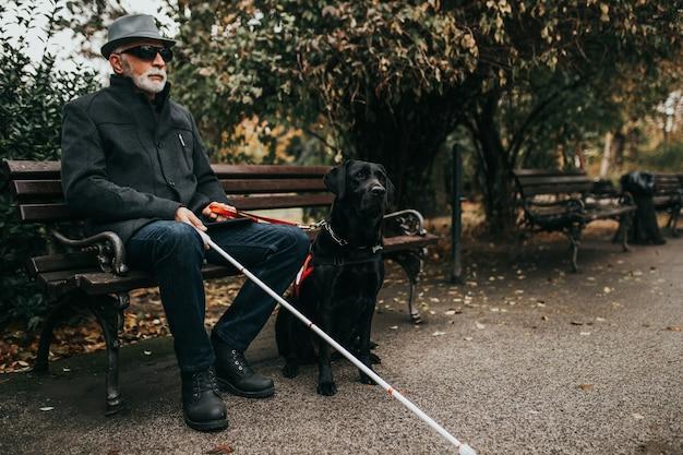 그의 안내견과 함께 공원에 앉아 긴 흰색 지팡이와 성숙한 시각 장애인.