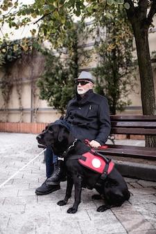 盲導犬と一緒に街の通りを歩いて座っている長い白い杖を持つ成熟した視覚障害者。