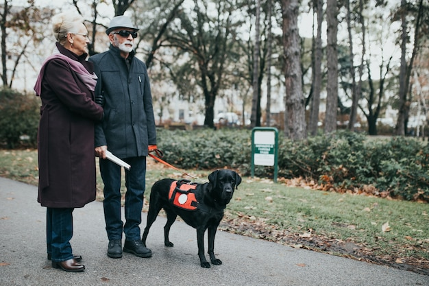 Mature blind man with a long white cane and his wife walking with their guide dog.