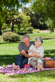 Mature couple  picnicking in the garden