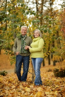 Mature couple standing in the autumn park