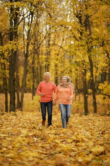Mature couple walking in the autumn forest