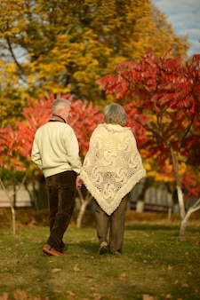 Mature couple walking in the autumn park,back view