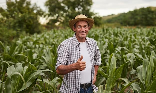 Mature farmer gesturing thumb up in corn field
