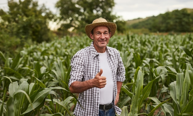 トウモロコシ畑で親指を身振りで示す成熟した農夫