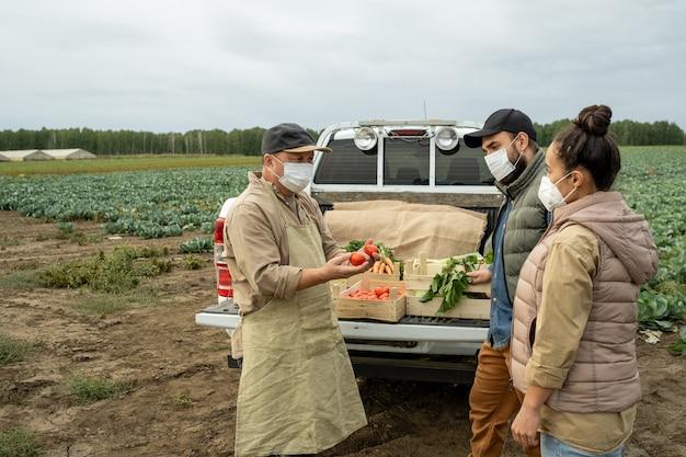 Зрелый фермер показывает свежие спелые помидоры молодой паре