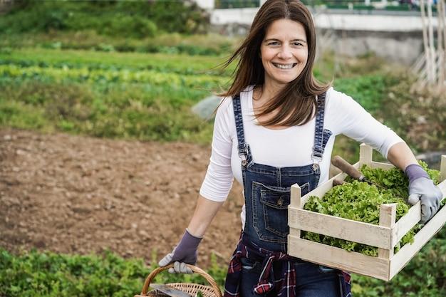 有機レタスを拾う家庭菜園で働く成熟した農家の女性-顔に焦点を当てる