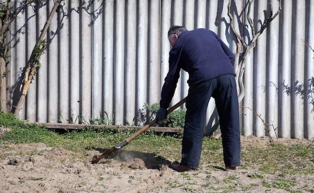 成熟した庭師はシャベルで土を掘っています