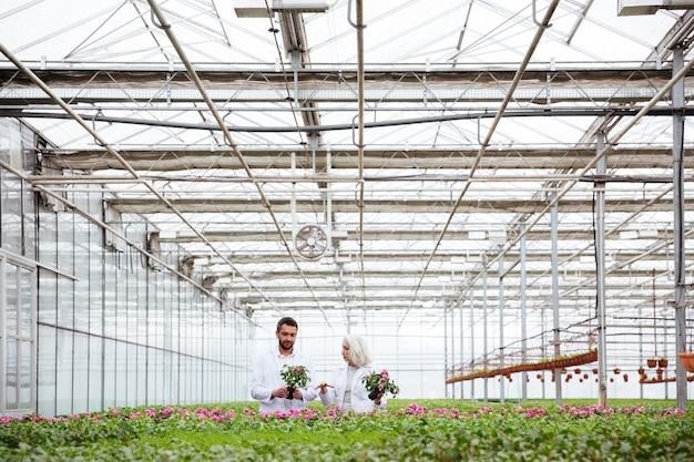 Mature gardeners working in greenery