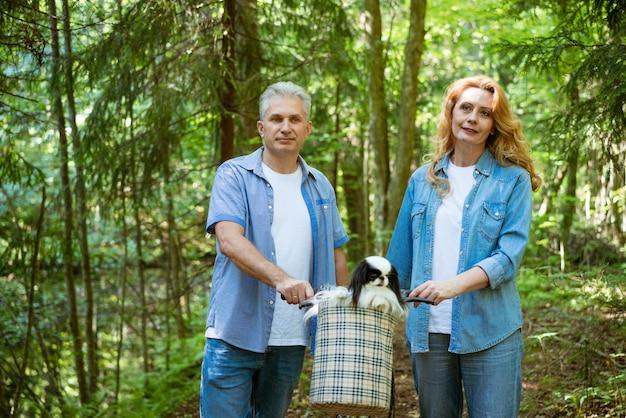 夏の公園で自転車と犬の散歩と成熟した幸せなカップル