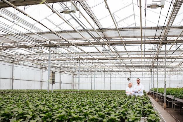Mature happy gardeners in greenhouse