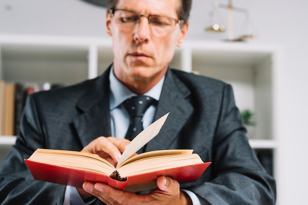 Mature male judge reading book in courtroom
