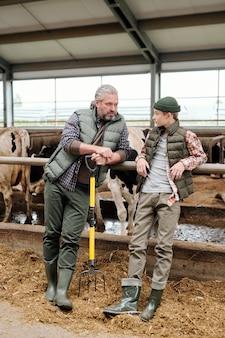 Зрелый мужчина-владелец животноводческой фермы разговаривает с мальчиком-подростком у загона со стадом чистокровных дойных коров, готовя свежий корм для скота