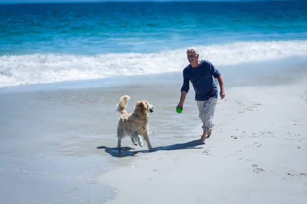 Mature man throwing a ball to his dog