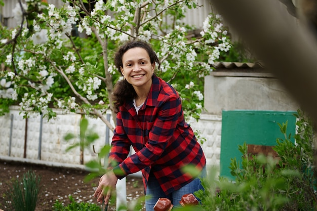 Mature mixed race woman gardener cute smiling working in vegetable garden on spring day. hobby, leisure activity, country house