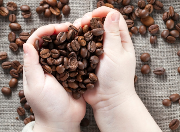 Mature roasted coffee beans in the palms