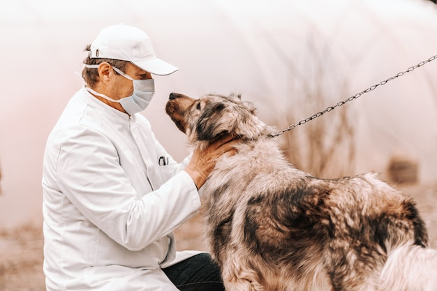 Mature veterinarian in white coat, mask and cap crouching and petting dog. rural exterior.
