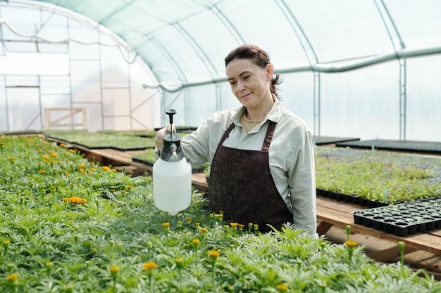 녹색 꽃 묘목을 돌보는 작업복을 입은 성숙한 여성