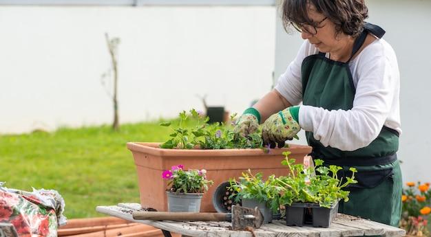 Зрелая женщина сажает цветы в саду