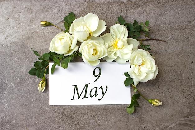 9 мая. 9 день месяца, календарная дата. белые розы граничат на пастельном сером фоне с календарной датой. весенний месяц, день года концепции.