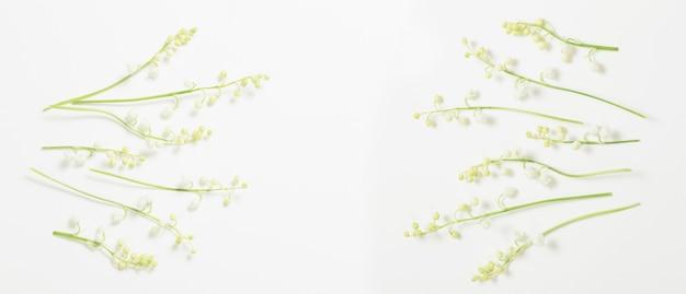 화이트에 백합 꽃 수 있습니다.