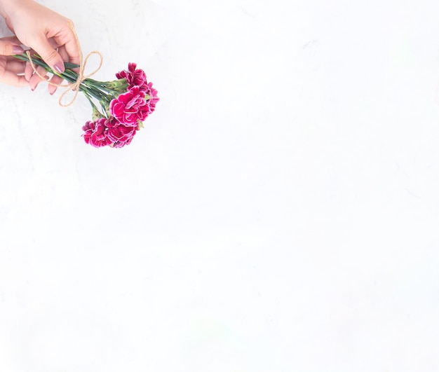 May mothers day idea concept photography - beautiful blooming carnations tied by rope bow holding in woman's hand isolated on bright modern table, copy space, flat lay, top view