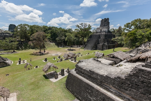 Mayan temple pyramids archeological excavation in tikal national park green rainforest