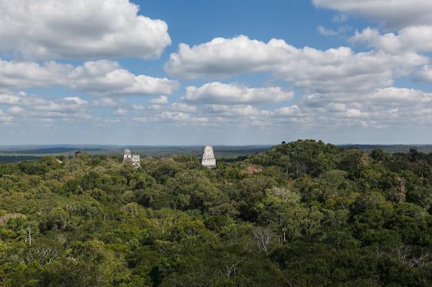 Mayan temple pyramids over rainforest of tikal national park, guatemala