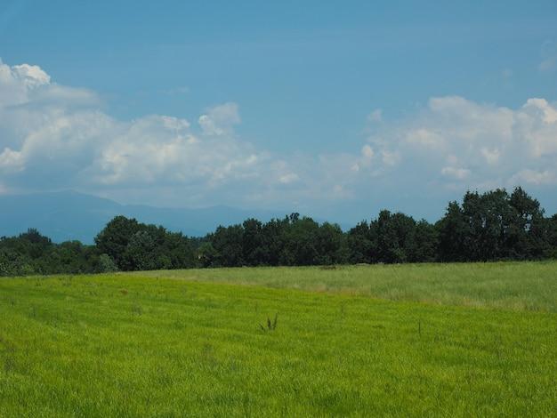초원과 하늘 배경