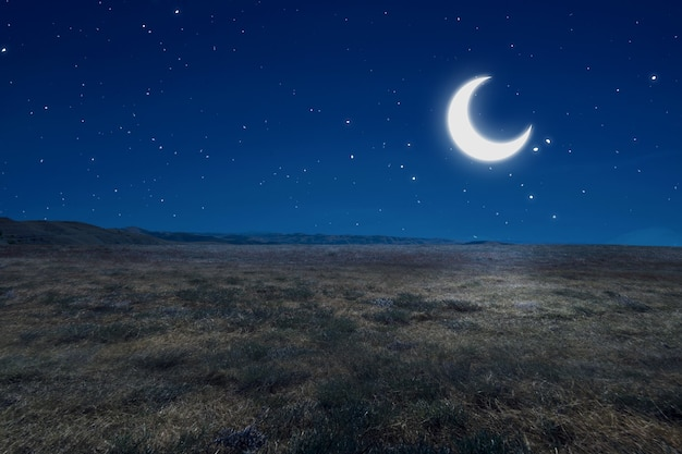 Поле луга с лунным светом и фоном ночной сцены