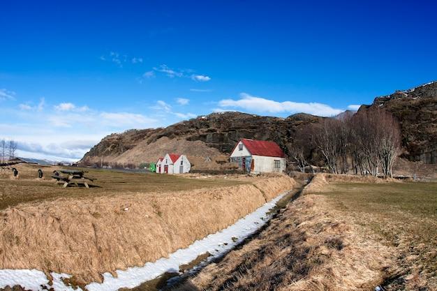 Луг в исландии с домом и деревьями