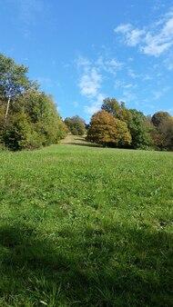 가을, 이탈리아의 화창한 날 돌로미티의 초원
