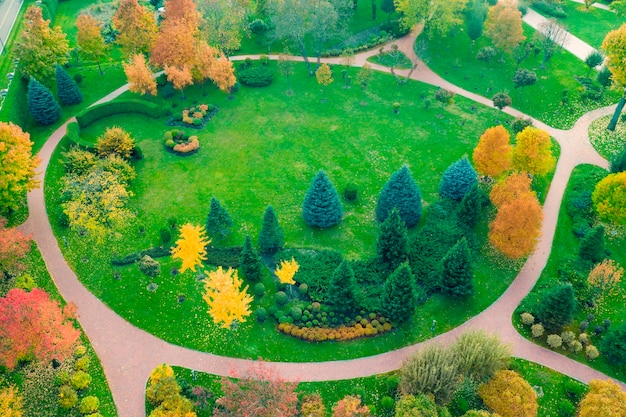 The meadow is surrounded by yellow and green trees, autumn landscape. drone view.