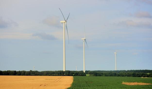 発電する風力タービンのある牧草地