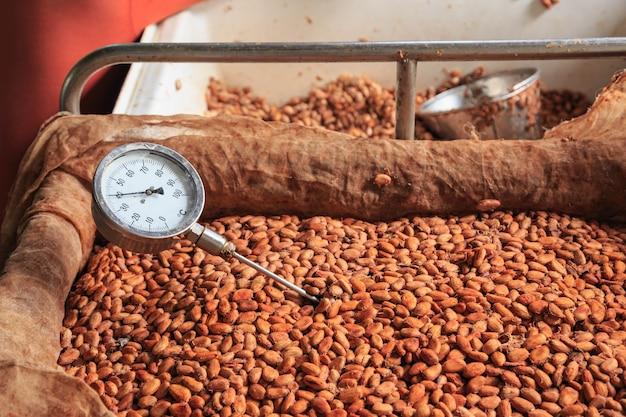 発酵したカカオ豆の温度を測定します。