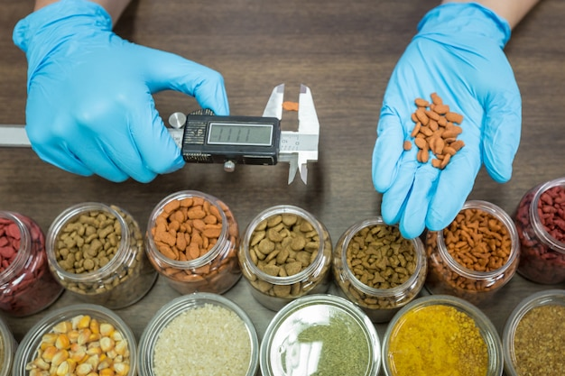 Measuring cat food kibble by vernier caliper. laboratory officials are pour cat food on hand.
