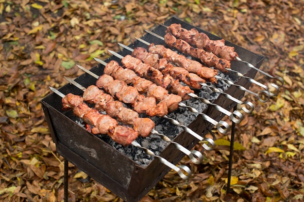 Мясо на шпажках на гриле
