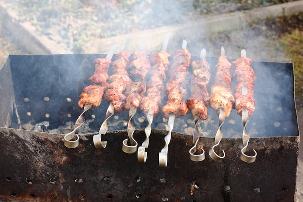 Meat on skewers is fried on an open fire in the grill