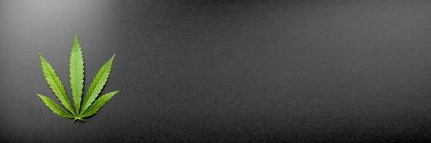 医療大麻の葉とcbdカンナビジオールオイルの概念、麻は黒い背景に上面図を残します