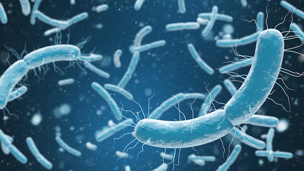 Medical illustration of bacteria cells