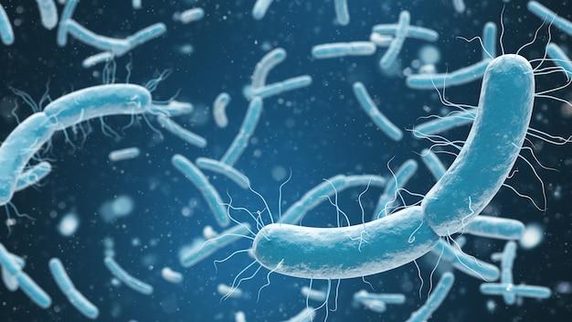 박테리아 세포의 의료 그림