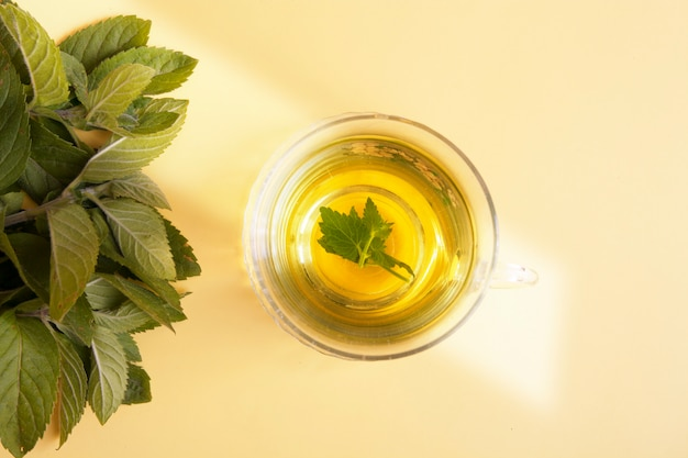 Medicinal herb mint and mint tea on a yellow background. herbal treatment concept