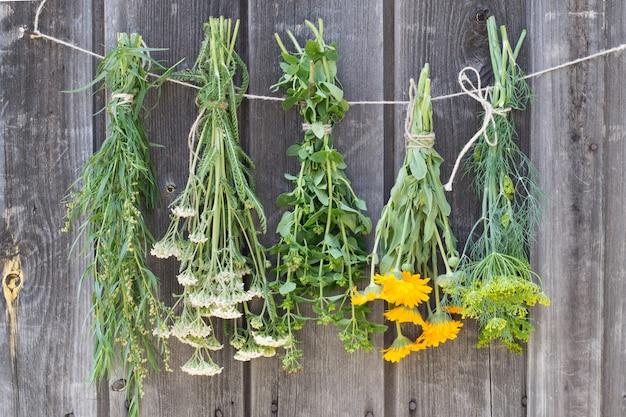 木製のテーブルにぶら下がって乾燥している薬草