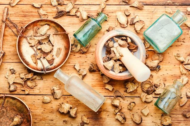 薬草、漢方薬におけるオオグルマの薬用根inula helenium