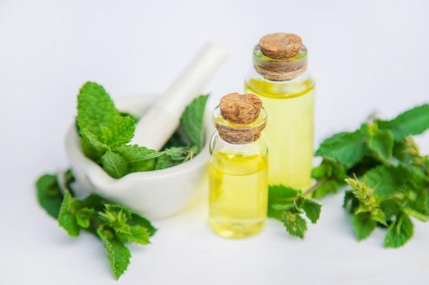 Medicinal herbs. medicine and health.