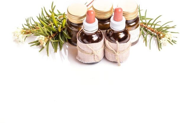 Medicinal herbs wild rosemary, tincture bottles or oil, used in medicine, homeopathy