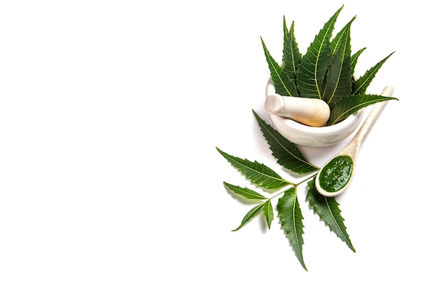 Medicinal neem leaves in mortar and pestle with neem paste on white surface